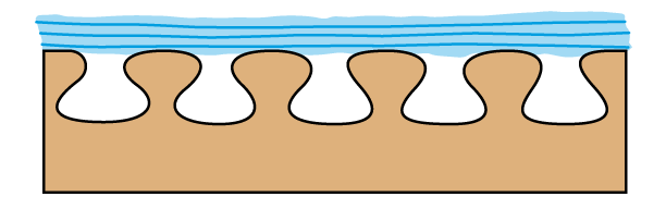 نفوذ پوشش به درون چوب
